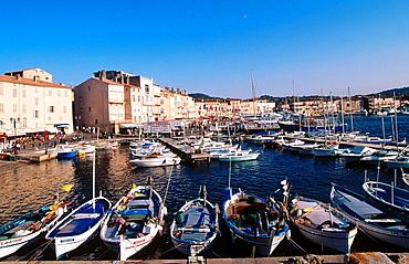 France, Cote d'Azur, Saint Tropez, Var, Harbour.