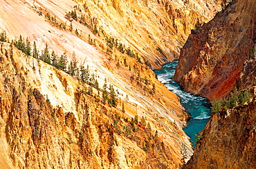 The Yellowstone River and canyon from Grandview Point, Yellowstone National Park, Wyoming USA.