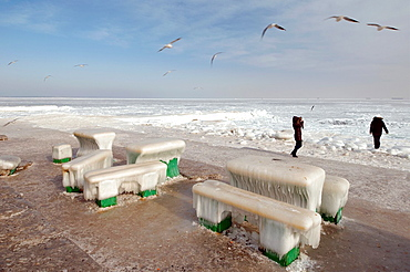 Icy cafe tables and benches on the beach of the frozen Black Sea, a rare phenomenon, last time it occured in 1977, Odessa, Ukraine, Eastern Europe.