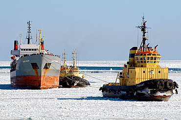 The Odessa seaport is blocked by ice, frozen Black Sea, a rare phenomenon, last time it occured in 1977, Odessa, Ukraine, Eastern Europe.