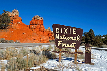 Red Canyon area of Dixie National Forest, Utah Scenic Highway 12, near Bryce Canyon National Park, Utah, United States of America.