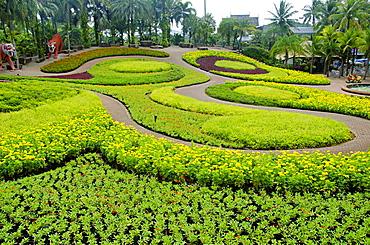 Butterfly Hill, Nong Nooch Village, Pattaya, Thailand.