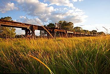 Wooden viaduct at Eltham, NSW, Australia.
