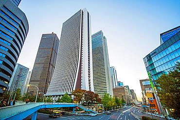 Japan, Tokyo City, Shinjuku District, Omekaido venue.