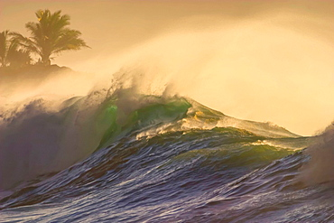 North, Shore, Oahu, Hawaii, USA