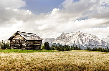 Cabin and wheatfield, Alta Badia South Tyrol, Italy