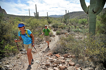 Backpacking couple hiking, Apache Junction, Arizona, USA