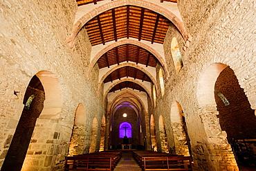 Nave, Saint-Michel church, Saint-Michel-de-Cuxa Benedictine Abbey, 879AD, Pyrenees-Orientales, France