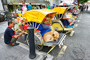 dog day afternoon, sleeping in a becak (trishaw) in Georgetown in Penang, Malaysia.