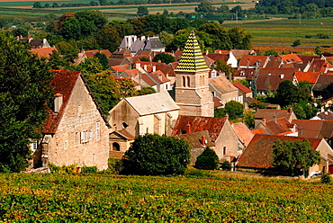 Church of Saint Martin founded in 1172 and surrounded by the best wines of the village as Domaine Napoleon, Fixin, Cote de Nuits, Cote d¥Or, Burgundy, France