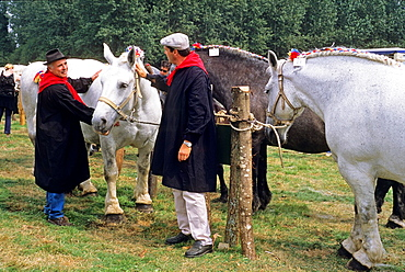 agricultural show at Longny-au-Perche, Regional Natural Park of Perche, Orne department, Lower Normandy region, France, Western Europe.