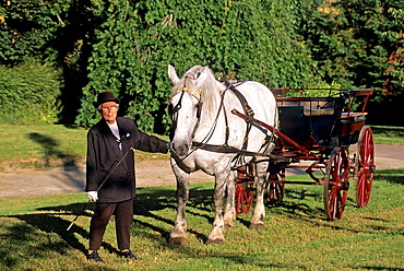 Jeanne Desjouis with a Percheron horse-drawn carriage at Manoir de Courboyer, Visitors Centre of the Regional Natural Park of Perche, Orne department, Lower Normandy region, France, Western Europe.