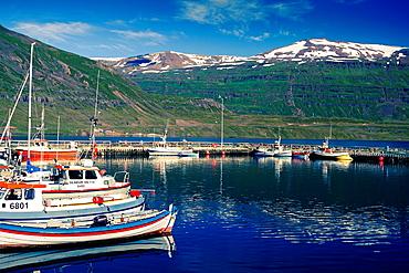 Fishing port. Seydisfjordur. East Fjords. Iceland, Europe.