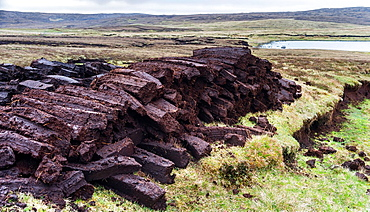 Peat cutting on Shetland, Scotland. the peat is drying next to the peat bank it was cut from. Europe, Great Britain, Scotland, Northern Isles, Shetland, May.
