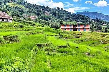 Kathmandu valley, Nepal.