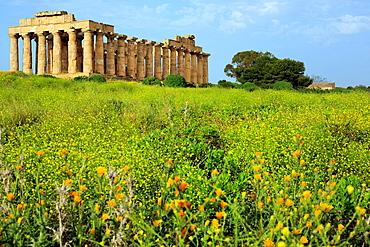 Temple of Hera, Selinunte, Sicily, Italy.