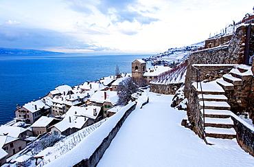 St Saphorin, Switzerland.