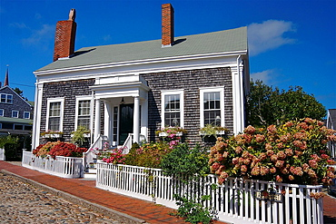 A pretty shingled house on a cobblestone street on Nantucket Island, Massachusetts, United States.