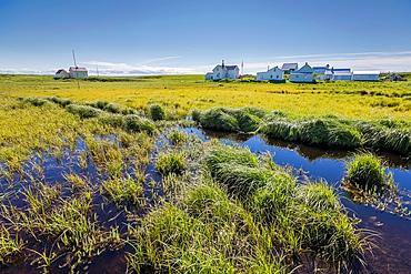 Flatey Island, Borgarfjordur, Iceland.