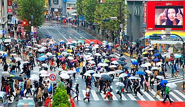 Japan, Tokyo, Shibuya, street crossing, crowd, people,.