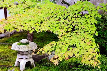 Japan, Kyoto, Tofukuji Temple, garden,.