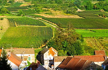 countryside with village and vineyards in Bourgogne, France