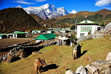 Khumjung, Sagarmatha National Park, the Himalaya range, Khumbu area, Solukhumbu District, Sagarmatha Zone, Nepal