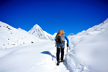 Hiker on the Everest Base Camp route, in the background stands the Pumori Peak, Sagarmatha National Park, the Himalaya range, Khumbu area, Solukhumbu District, Sagarmatha Zone, Nepal