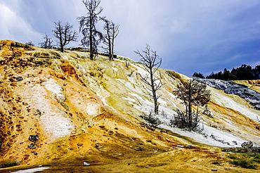 Mammoths Falls volcanic terraces.