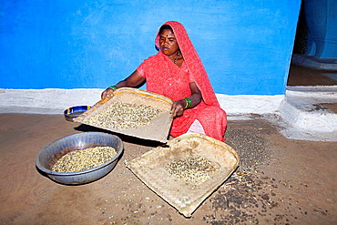 Korku Woman with winnowing pan Khalwa, Madhyapradesh, India.