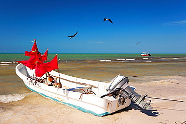 Fishing boats and birds looking for food, Isla Holbox, Cancun, Quintana Roo, Yucatan Province, Mexico.
