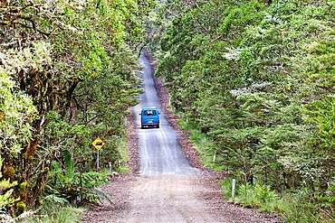Van on the road at the New England National Park, New South Wales, Australia