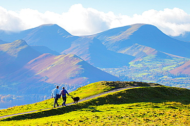 Walking the dog on Latrigg Lake District National Park Cumbria England United Kingdom Great Britain.