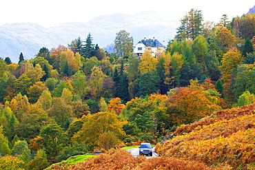 Autumn woodland scene with house on the hill and car driving below Lake District National Park Cumbria England United Kingdom Great Britain.