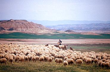 La Blanca, Bardenas Reales, Navarra, Spain.