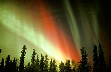 Aurora Borealis (Northern Lights), Alaska, USA