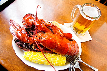 Overhead view of lobster dish and beer at Union Oyster House, Union Street, Boston, Massachusetts, USA