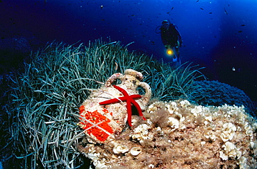 Diver, amphora and underwater life, Mediterranean Sea