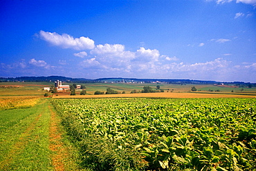 scenic farm lancaster county pennsylvania usa