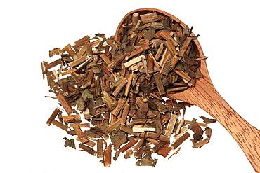 getrocknetes Kraut der Heilpflanze Gluckswasserdost, Eupatorium fortunei, Pei Lan / dried herb of the medicinal plant Pei Lan, Eupatorium fortunei