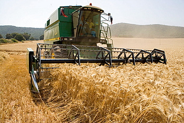 Agricultural machinery, Combine harvester on field of wheat, 'Learza' estate, Near Estella, Navarre, Spain