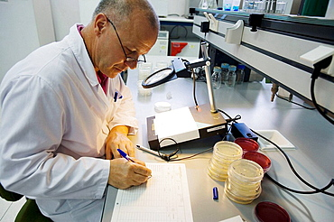 Bacteries count, Microbiology Laboratory, Microbiological analysis of food, AZTI-Tecnalia, Technological Centre specialised in Marine and Food Research, Sukarrieta, Bizkaia, Euskadi, Spain.