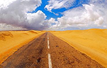 RN1 Highway crossing the desert, near Laayoune, Morocco