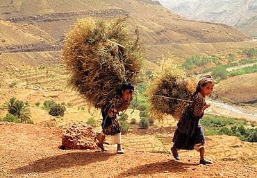 Valley of Ait Bougmez, High Atlas, Morocco