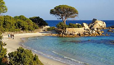 Natural Area of Tamariccio, on the beach of Palombagio, near Porto Vecchio, Corsica, France