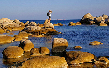 France, Corsica, Natural Area of Tamariccio, by the Palombagio beach, near Porto Vecchio.