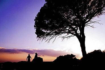 France, Corsica, Sunset at the Tamariccio Natural Area, near Porto Vecchio.