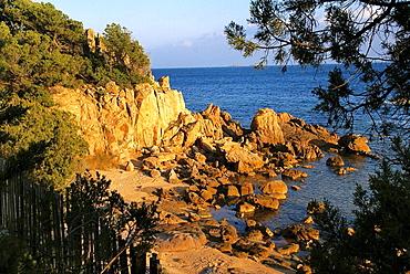 France, Corsica, Natural Area of Tamariccio, near Porto Vecchio.
