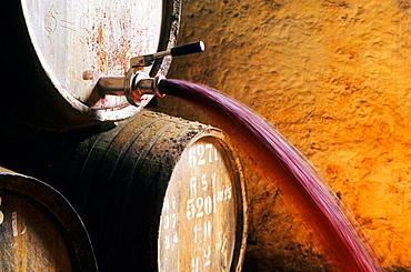Pipas: a pipe is a cask containing the wine, Porto wine cellar, Vila Nova de Gaia, Port wine (Vinho do Porto), Oporto, Portugal