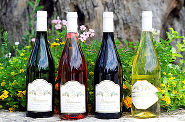 The three AOC (Appellation d'origine controlee) Patrimonio Wines.